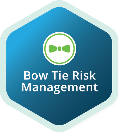 CRO Project Management - Risk Management